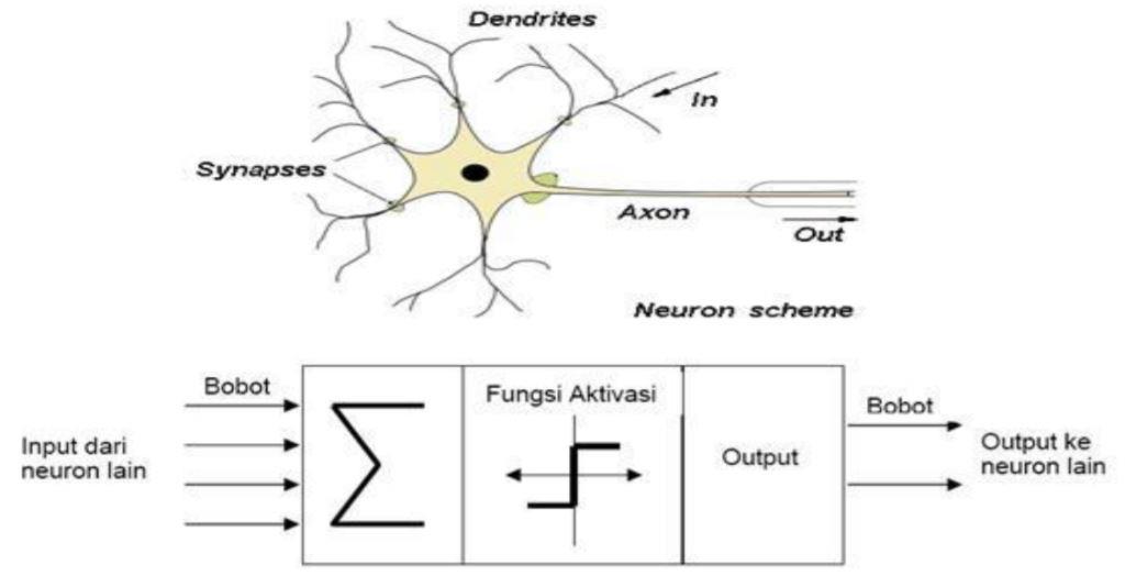 Struktur Artificial Neural Network (ANN)