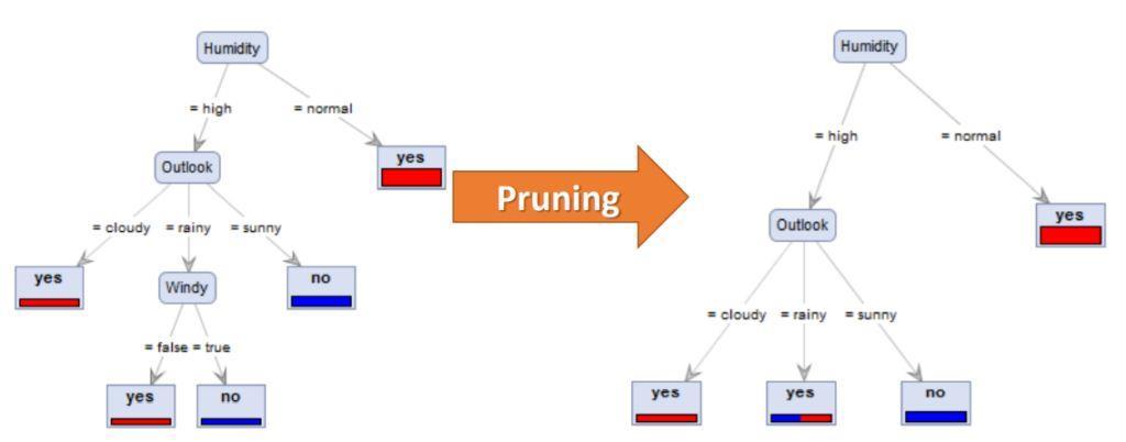 Contoh Pruning